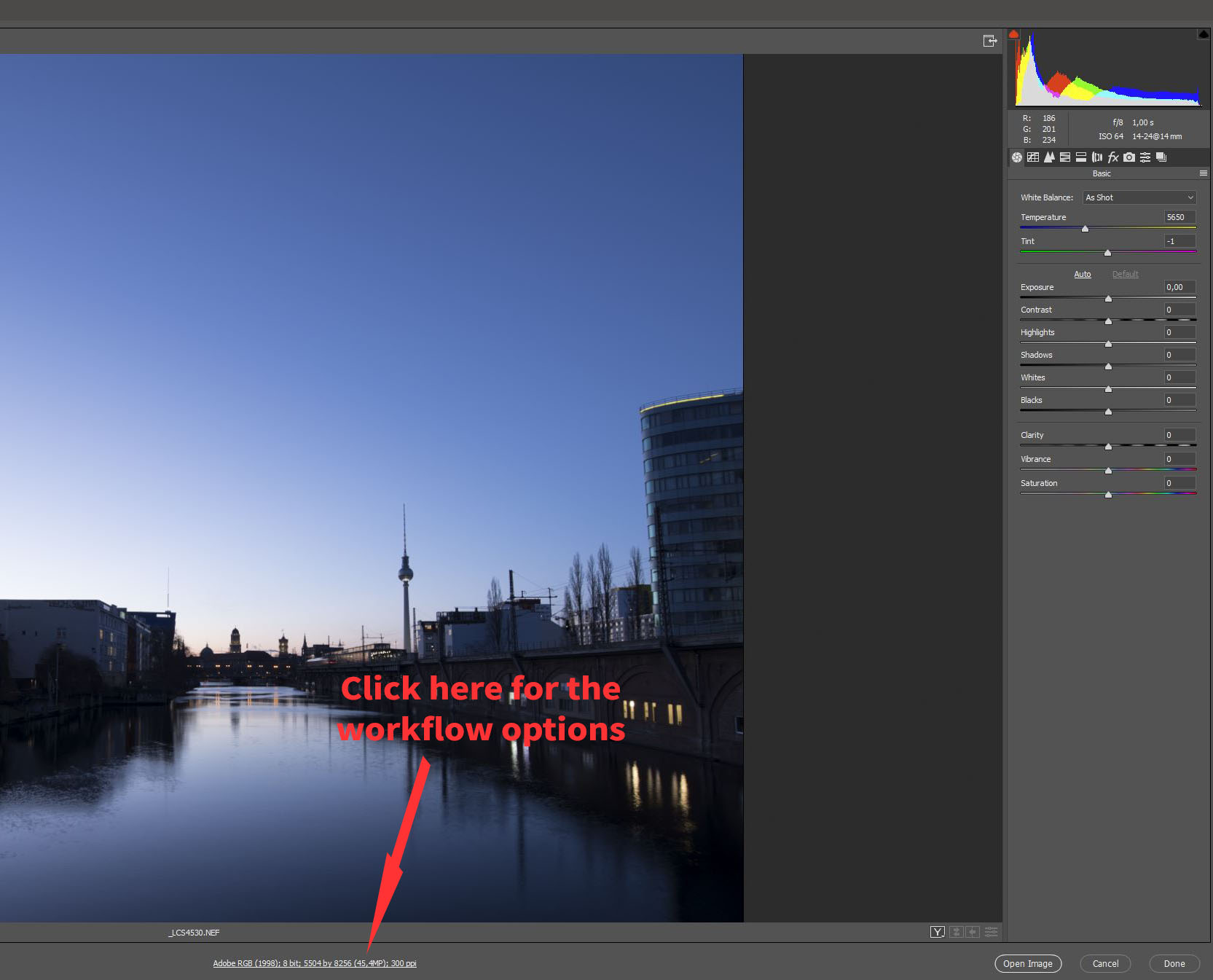 camera raw workflow settings