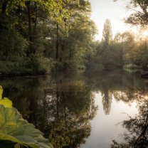 sunset_in_tiergarten